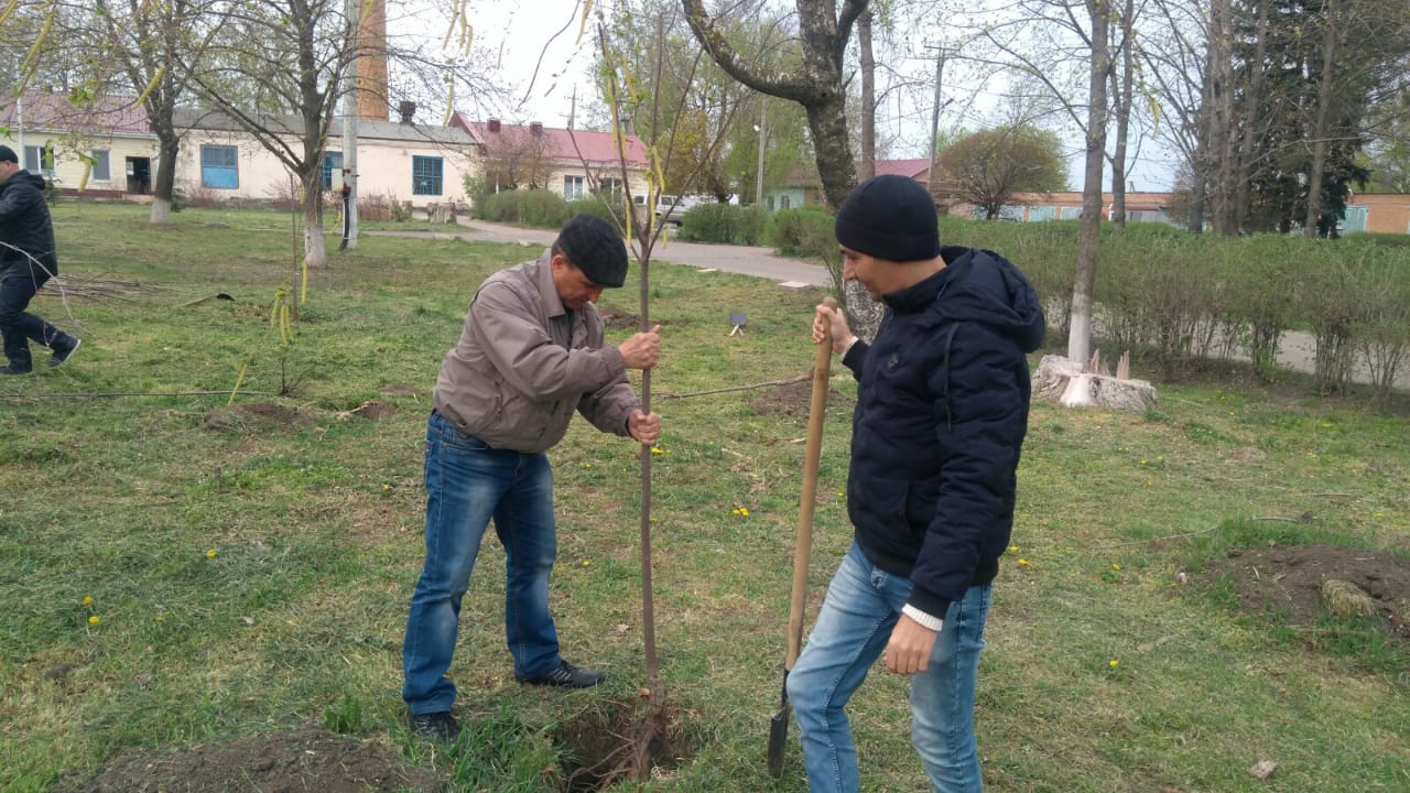 WhatsApp Image 2020 05 08 At 105136.