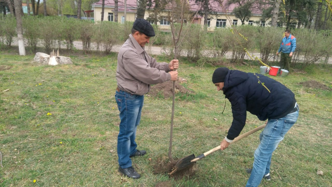 WhatsApp Image 2020 05 08 At 105139.